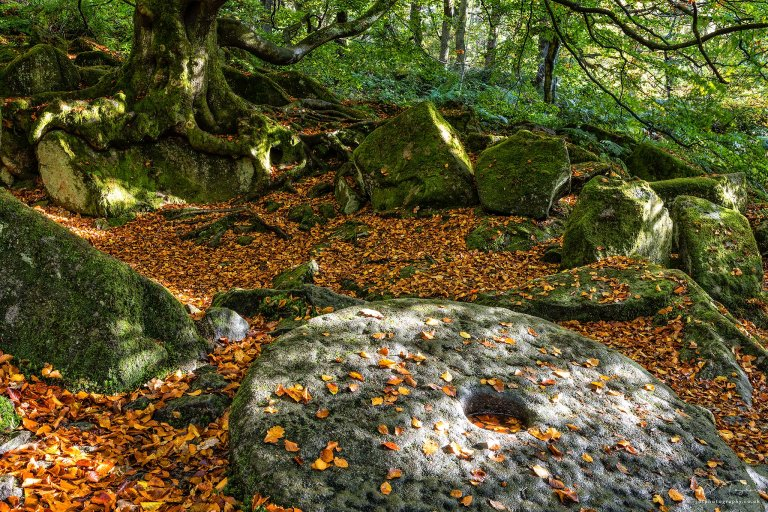 peak-district-in-colour-padley-gorge